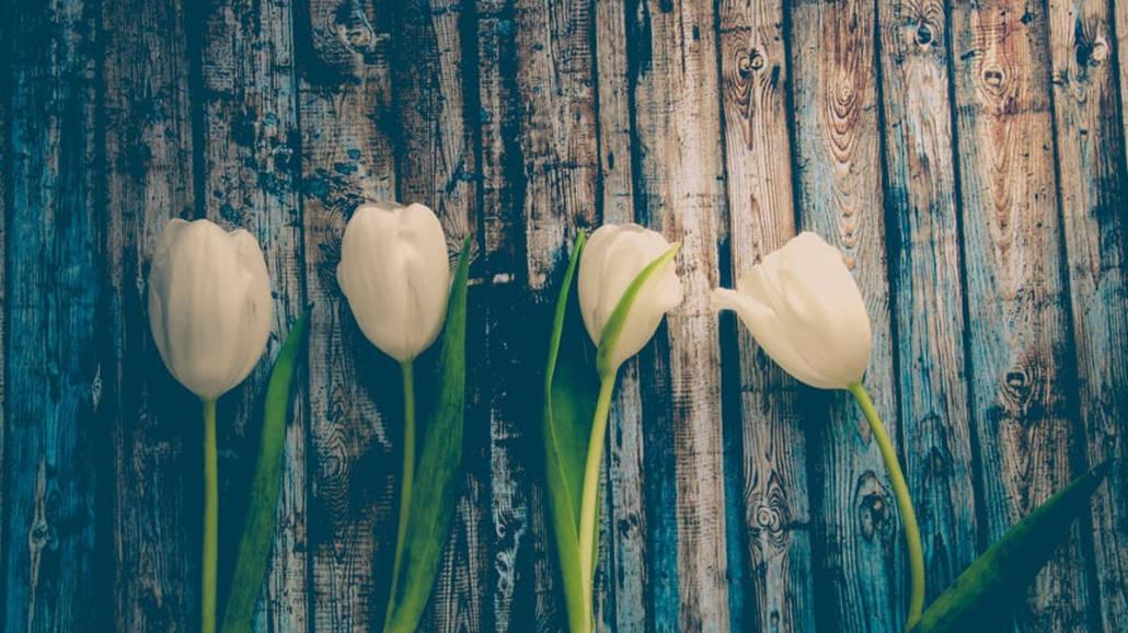 Przesilenie wiosenne - jak mieć dobry nastrÃłj wiosnÄ…?