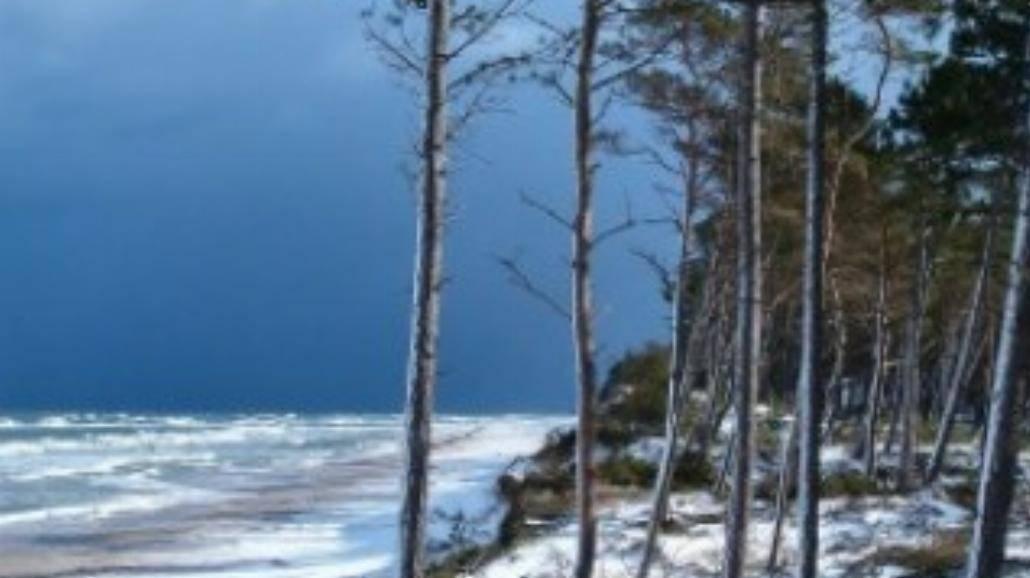 Zatoka Pucka rozbłyska turkusowym światłem