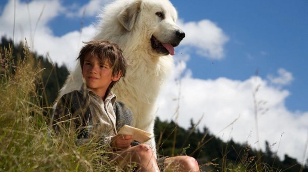 """Zobacz jak powstawał film """"Bella i Sebastian 2"""" [WIDEO]"""