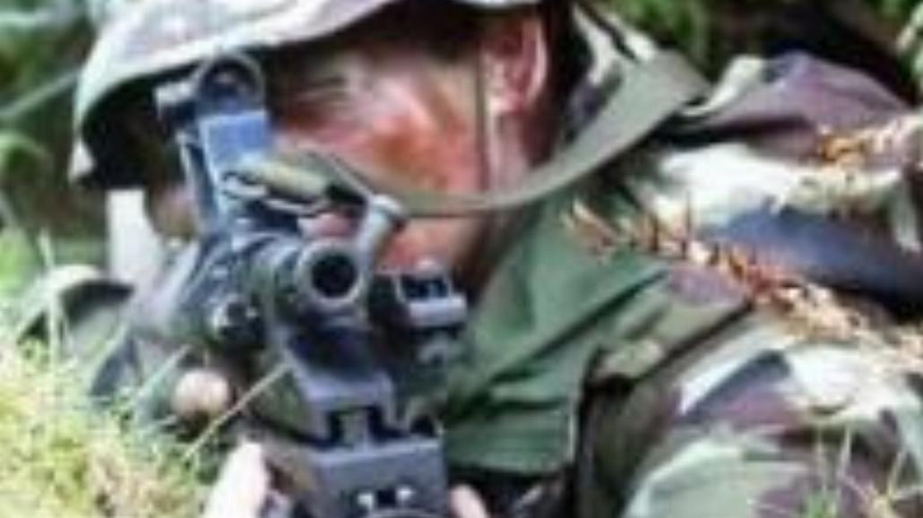 Kampania na rzecz armii zawodowej
