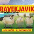Ravekjavík: Second Coming już w czerwcu - znamy wykonawców - festiwal, festiwale 2018, muzyka elektroniczna, Islandia
