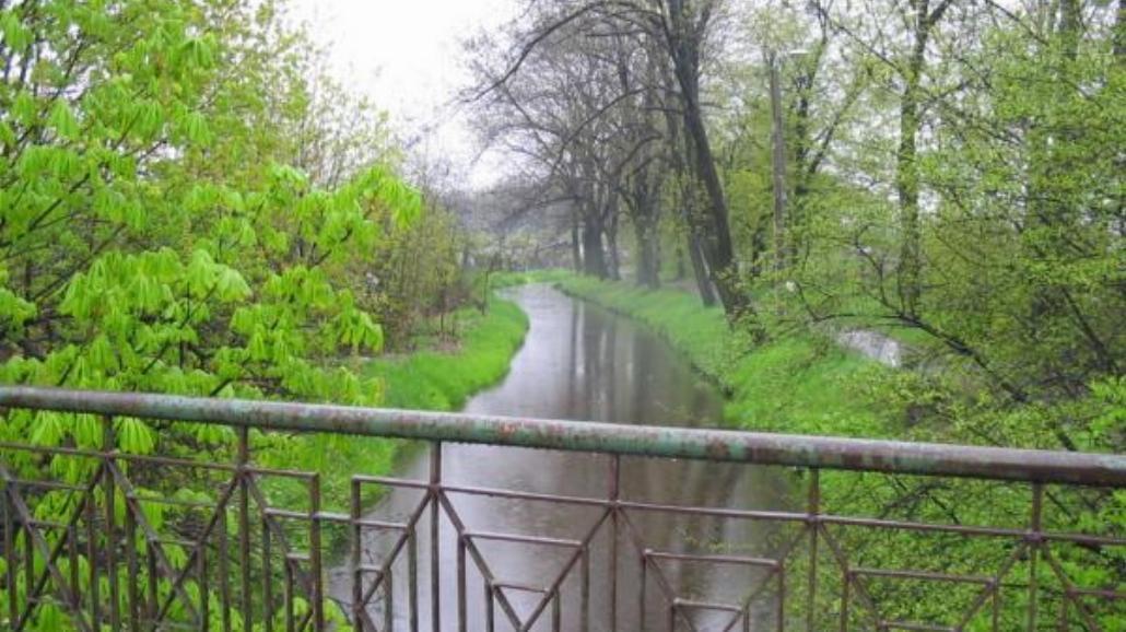 Spacer w deszczy, czyli mokre zdjęcia
