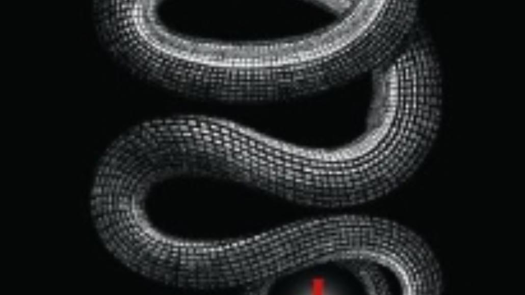Labirynt węża