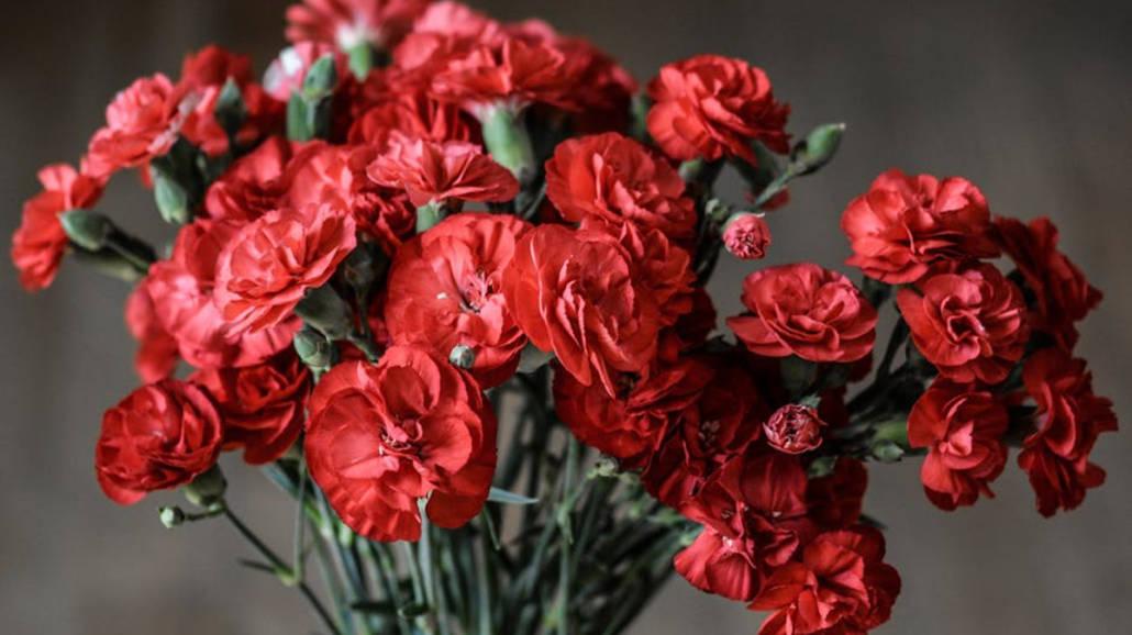 Kwiaty na Dzień Kobiet - jakie wybrać?