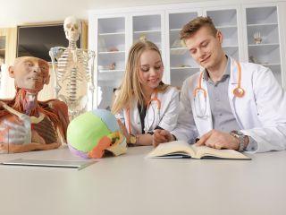 Wydział Medyczny na Uczelni Łazarskiego - dlaczego warto tam iść na studia - Medycyna, Jak zostać lekarzem, Kierunki, Dobra atmosfera, Pomoc dla Studentów, Informacje