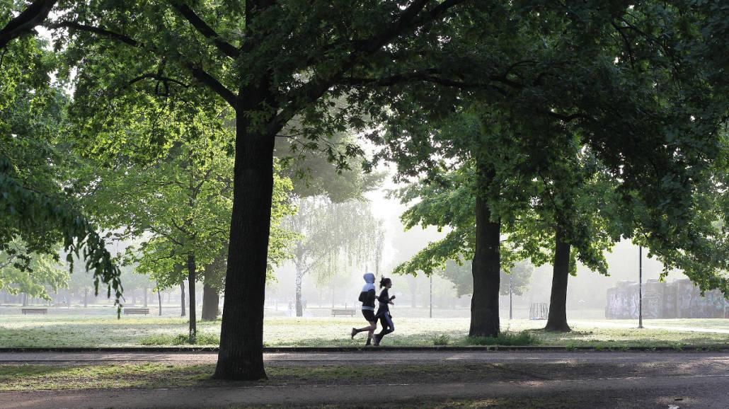 Trening biegowy w Warszawie